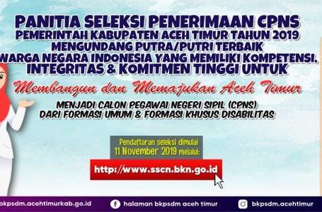 Tak Punya e-KTP, Daftar CPNS 2019 Bisa Pakai Suket