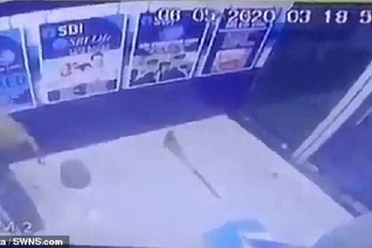Mesin ATM di India Dibobol, Pelakunya Adalah Monyet