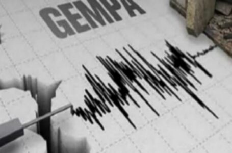 Ilustrasi Gempa Bumi | Foto: suara.com